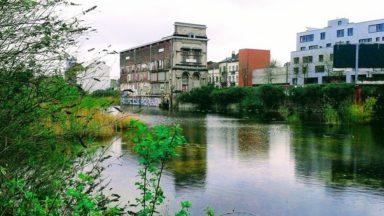 La commune de Forest rejette le projet de logements sur la zone du marais Wiels