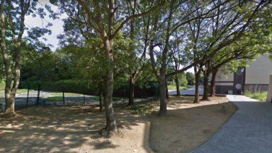La Région bruxelloise va reprendre la gestion de quatre parcs communaux