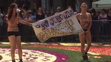 Les deux activistes qui ont protesté seins nus sur la Grand-Place de Bruxelles risquent des poursuites