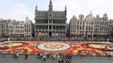 Plus de 20.000 personnes ont vu le tapis de fleurs de la Grand-Place depuis le balcon de l'hôtel de Ville de Bruxelles