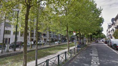 Uccle : des travaux d'élagage sont prévus sur l'avenue Churchill, des riverains s'en plaignent