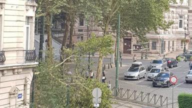 Saint-Gilles: les lignes de tram 81 et 97 interrompues après la chute d'un arbre
