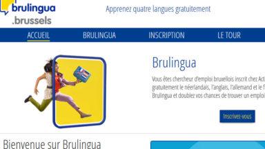 Brulingua proposera bientôt d'apprendre jusqu'à 24 langues