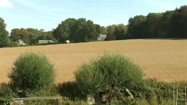 Communales 2018 : le casse-tête du champ des Dames blanches à Woluwe-Saint-Pierre