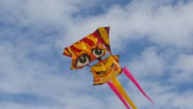 Un nouveau festival de cerfs-volants les 22 et 23 septembre à Bruxelles