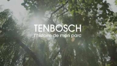 Un film raconte l'histoire du parc du Tenbosch