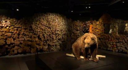 Exposition Ours Nounous - Muséum Bruxelles