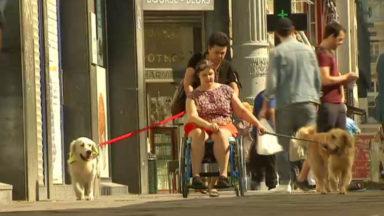 Le glacier Häagen-Dazs propose un dédommagement à la personne handicapée qui n'a pu rentrer avec son chien d'assistance