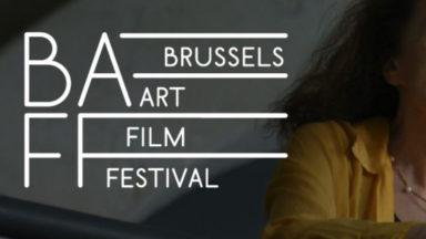 Onze films en compétition au Brussels Art Film Festival du 15 au 18 novembre