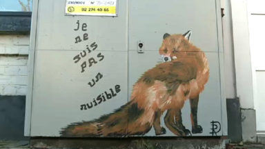 """Des renards peints sur les bornes électriques : """"Ces animaux ne sont pas des nuisibles"""""""
