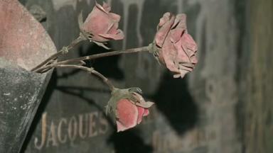 Une balade contée au coeur des catacombes de Laeken