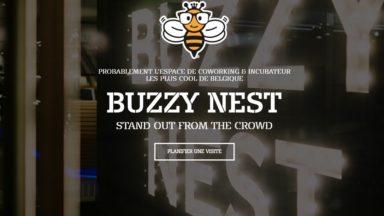 La société de co-working BuzzyNest va installer de nouveaux bureaux à Watermael-Boitsfort
