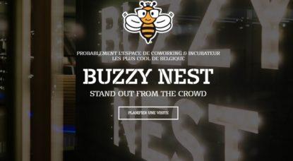 BuzzyNest - Logo