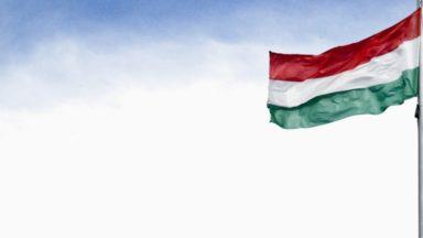 Un étudiant belgo-canadien de 32 ans arrêté en Hongrie lors d'une manifestation en soutien des travailleurs hongrois