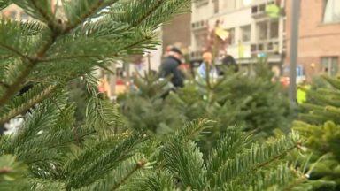 Sapins de Noël : voici où et quand les déposer en Région bruxelloise