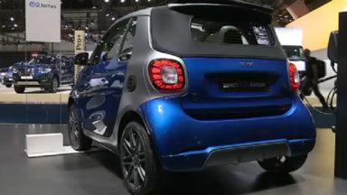 Salon de l'auto : des voitures petites mais puissantes