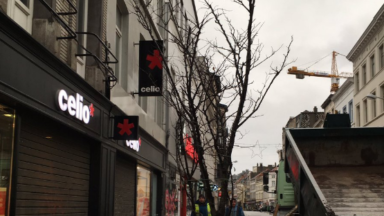Les arbres ont été plantés le long de la Chaussée d'Ixelles après des mois d'attente