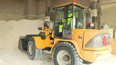 Chutes de neige : 20 tonnes de sel ont été déversés sur les routes de la Région