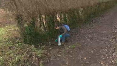 Tous les jours, Fabienne ramasse les déchets pendant deux heures pour une nature plus propre
