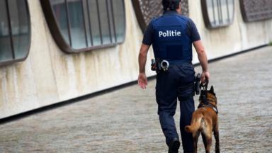 Molenbeek : cinq personnes interpellées pour trafic de cannabis puis relâchées