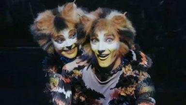 La comédie musicale Cats traverse la Manche pour se poser au Palais 12