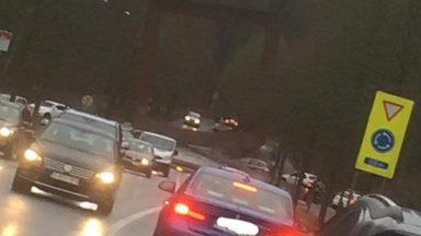 Watermael-Boitsfort : la circulation perturbée sur la chaussée de La Hulpe après la chute d'un arbre
