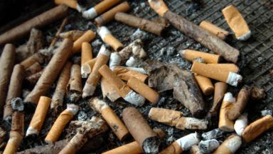 Leo Not Happy vise le demi-million de mégots de cigarettes ramassés