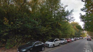 Woluwe-Saint-Lambert : 180 arbres risquent d'être abattus au Val d'or