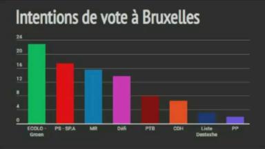 Intentions de vote à Bruxelles : Ecolo et le PS font la course en tête, suivis du MR