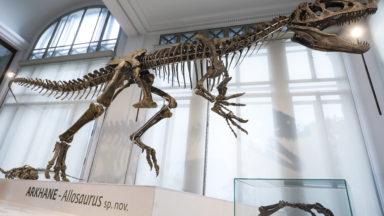 Près de 330.000 visiteurs pour le Musée de l'Institut des sciences naturelles en 2018