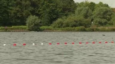Des problèmes dans les étangs anderlechtois : Bruxelles Environnement fait le point