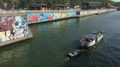 Des algues bleues dans le canal de Bruxelles