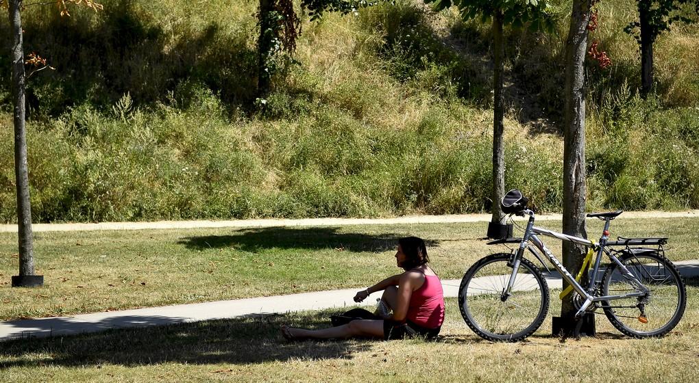 Soleil Cycliste Vélo à l'ombre Canicule Chaleur - Belga Dirk Waem