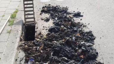 Ganshoren : des sacs de déjections canines retrouvés dans les égouts