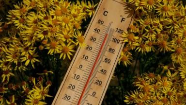 Les températures poursuivent leur hausse sous un vent faible