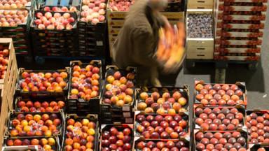 Les fournisseurs de l'horeca du Marché matinal travaillent à plein régime