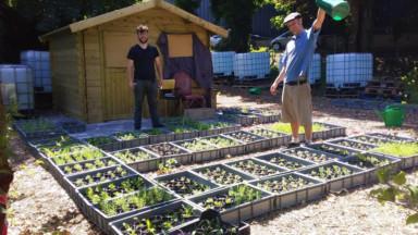 Forest : un projet de végétalisation urbaine inauguré ce samedi