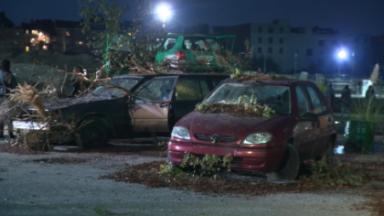 Nuit Blanche met en lumière le changement climatique avec d'imposantes œuvres d'art