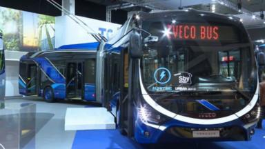 On recherche 15.000 chauffeurs d'autocar en Belgique