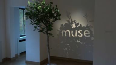 L'exposition Ekphrasis met à l'honneur l'utilisation des mots dans l'art