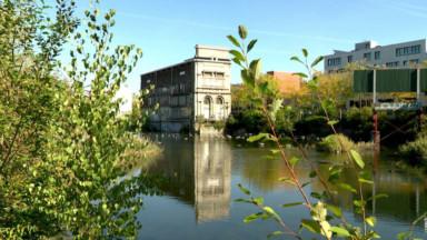 Forest : le projet immobilier au marais Wiels suspendu