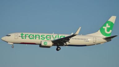 Transavia, la compagnie à bas coûts du groupe Air France-KLM, arrive à Bruxelles
