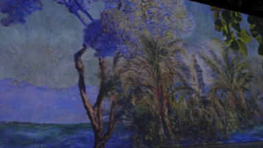 Virtuel : en immersion dans les tableaux de Monet