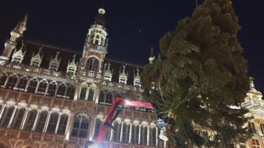 Le sapin de Noël est arrivé sur la Grand-Place