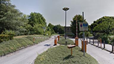 Ixelles : un collectif citoyen dénonce un abattage d'arbres sur le site de La Plaine