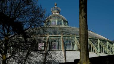 Nouvelle proposition d'ouvrir partiellement le Domaine royal de Laeken au public