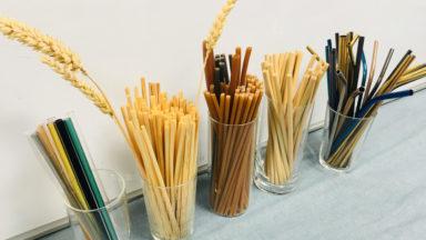 Pailles en bambou, inox ou verre : l'alternative au plastique