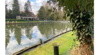Uccle : l'étang du Moensberg obtient un permis d'urbanisme