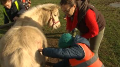 La ferme pédagogique, Happy Farm, reçoit un prix pour son soutien aux jeunes défavorisés