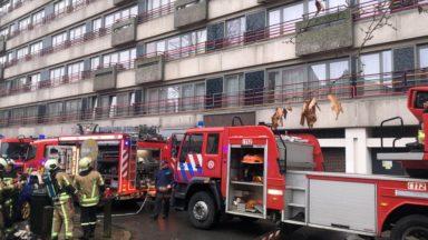Les pompiers s'occupent des patients Covid mais ne sont pas testés